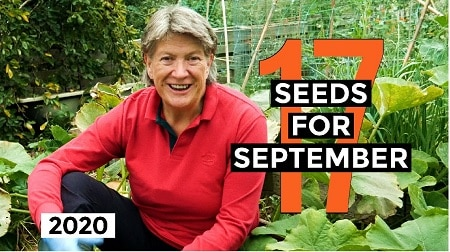 Seeds to Sow in September – resources list