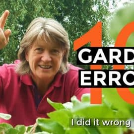 gardening mistakes and how to avoid them