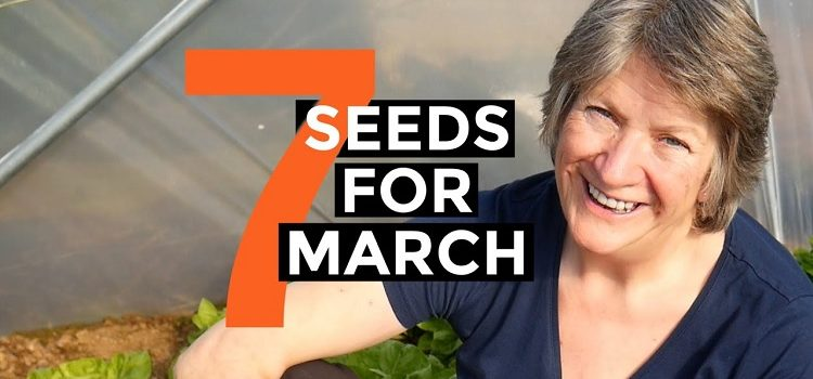 seeds to sow March