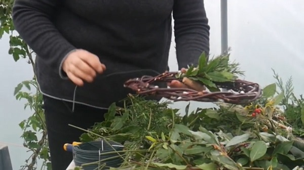 Securing bundles of foliage to a wreath base.