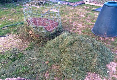 Recycled stock fencing made into a hoop to contain a compost heap.